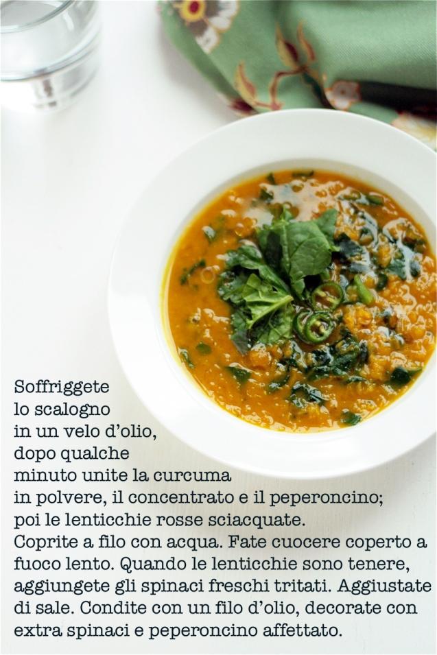 zuppa_curcuma-lenticchie-how